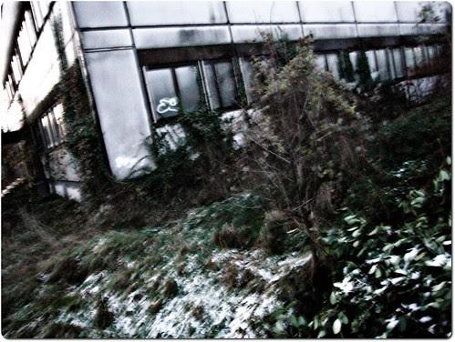 Flou hivernal