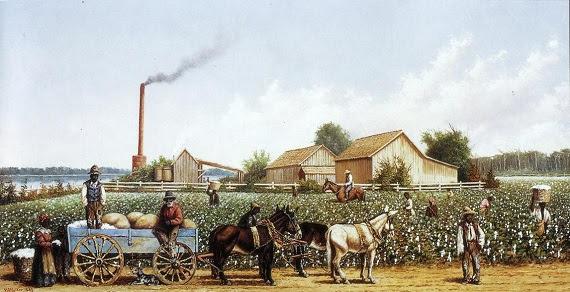 walker plantation