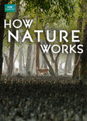 How Nature Works | filmes-netflix.blogspot.com
