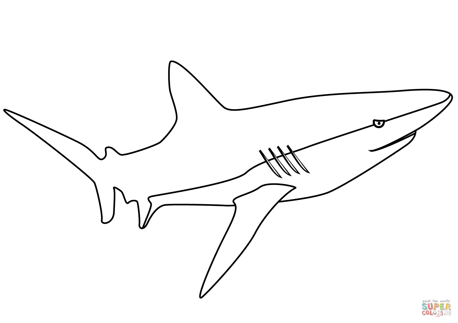 Wobbegong Shark Pages Coloring Pages