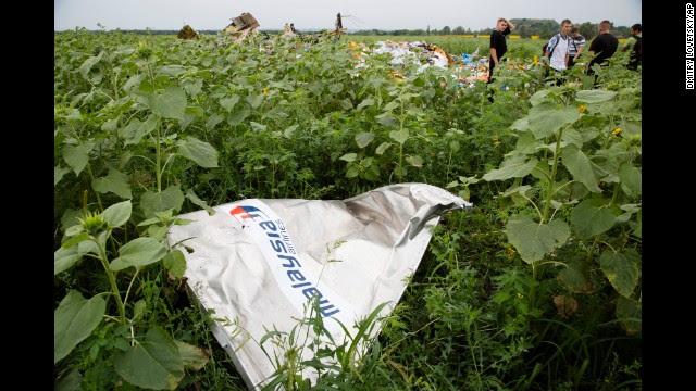 Malaysia Airlines аварии реактивные в Украине