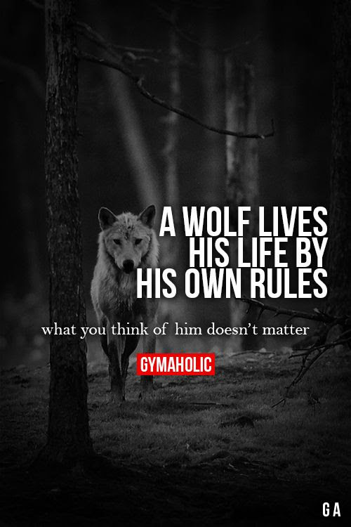 Similiar Lone Wolf Quotes Keywords