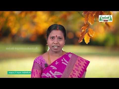 5th Social Science நல்ல குடிமகன் அலகு 3 பகுதி 1 Kalvi TV