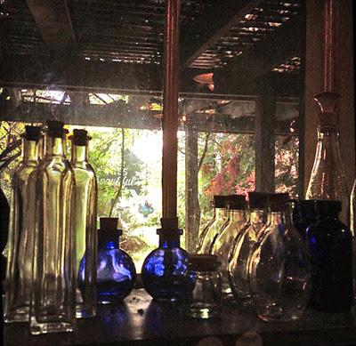Bottle-Shelf-Window-at-the-Lucky-Mojo-Curio-Company