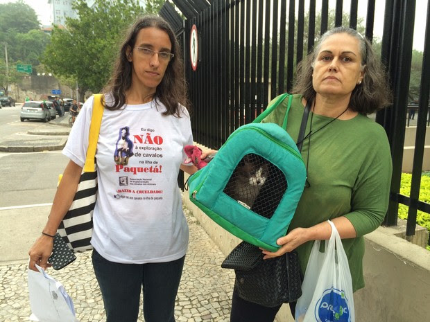 Integrante de ONG recuperou gato que seria retirado pela prefeitura (Foto: Marcelo Elizardo/ G1)