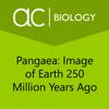 Sebit, LLC - Earth 250 Million Years Ago artwork