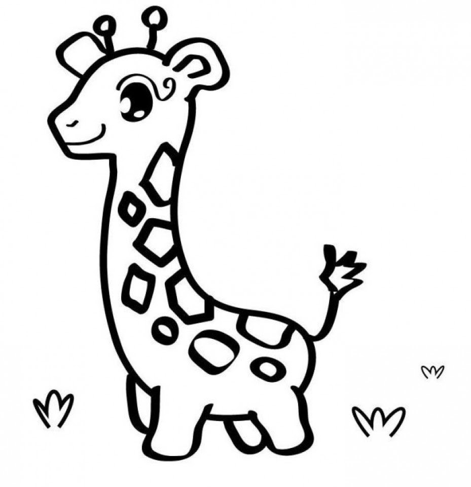baby animal coloring pages free printable 66396