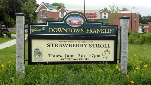 Strawberry Stroll - 2012