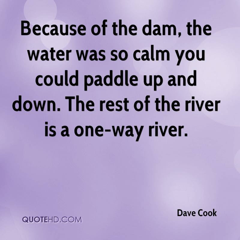 Dave Cook Quotes Quotehd
