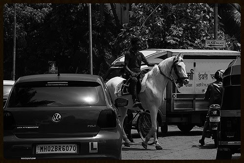 If wishes were horses, beggars would ride by firoze shakir photographerno1