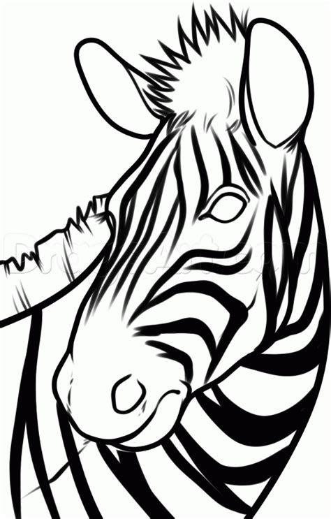 draw  zebra head step  step great plain