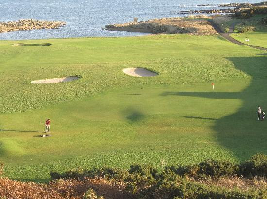 Photos of Crail Golfing Society - Balcomie and Craighead Courses, Crail
