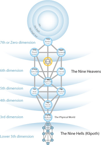 dimensions on the Tree of Life