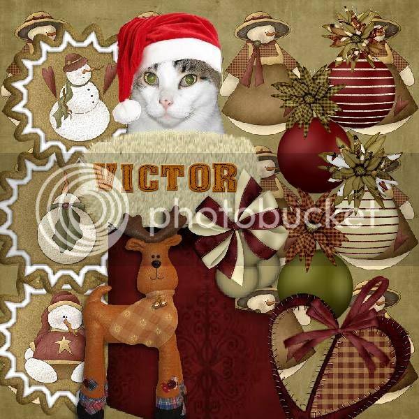 Holly Daze,Tabby Cat,Domestic Cat,Happy Holidays,Holiday Glitter