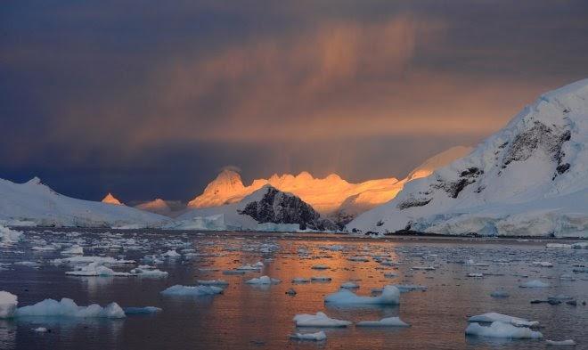 В Антарктиде зафиксирован рекорд высокой температуры
