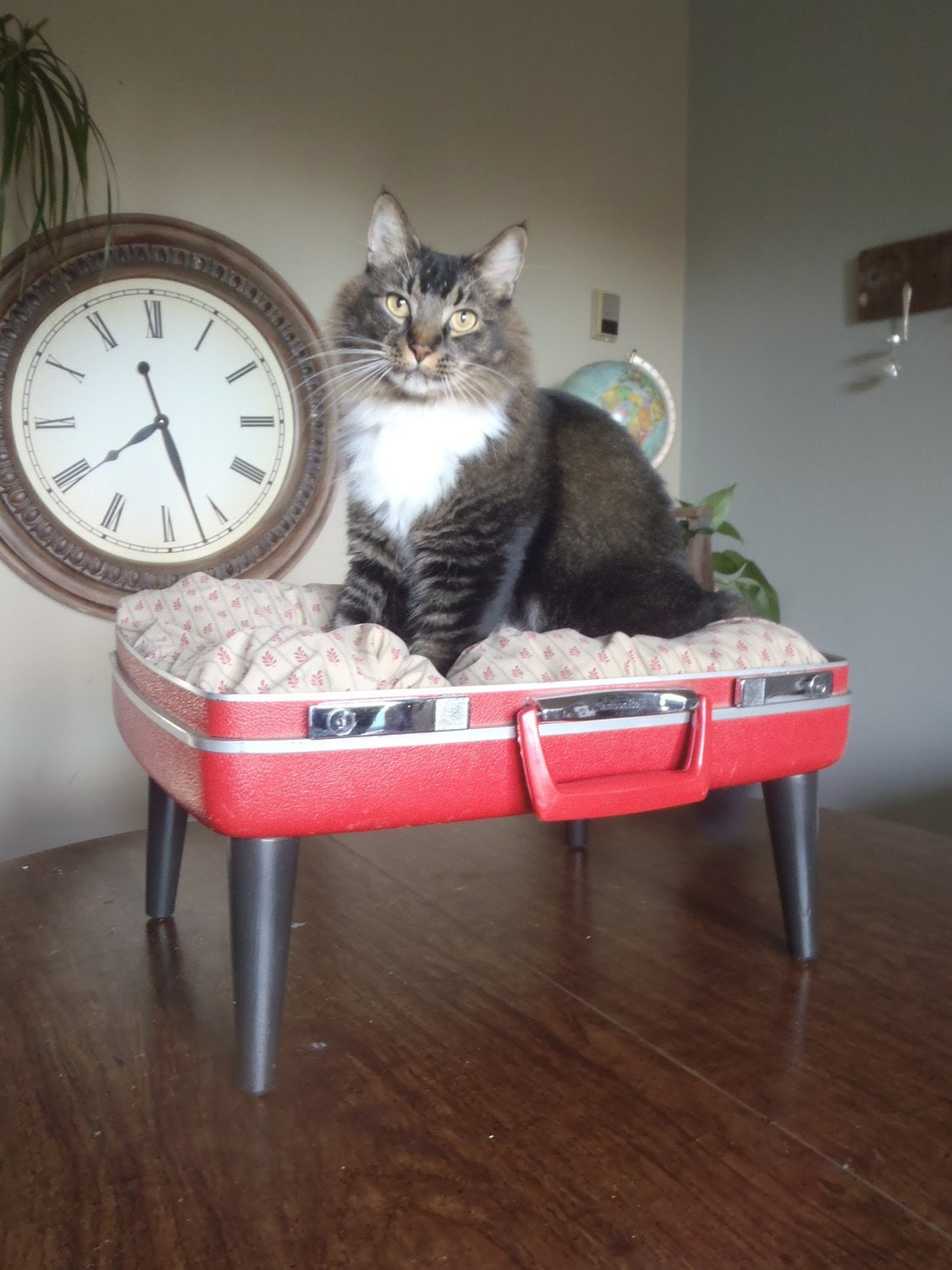 Lovable Luggage Pet Bed - Reds and Browns - 2 dollars goes to tlccatrescue