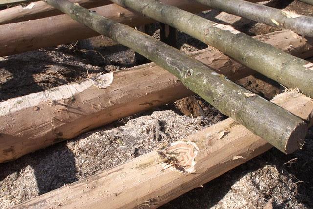 DSC_3731 Building a log bridge