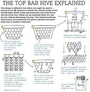 Kenyan Top Bar Hive - HOME DECOR
