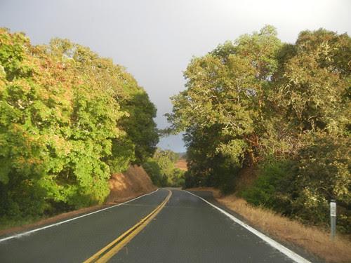 Sonoma, California _ 7732