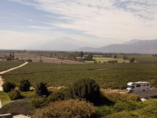 Família passou por 43 países visitando vinícolas; na foto, Chile, varginha (Foto: Pedro Henrique Barros/Wine World Adventure)