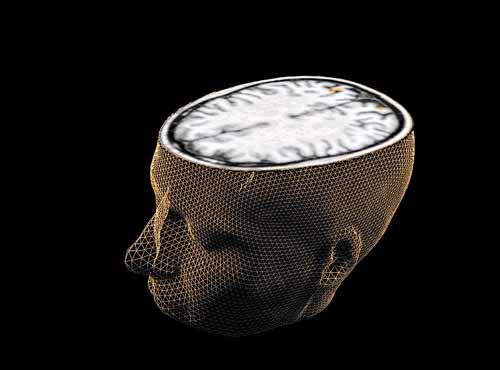 Novas tecnologias ajudam a identificar atividade cerebral com precisão. Foto: Sage Center for the Study of the Mind/Divulgação