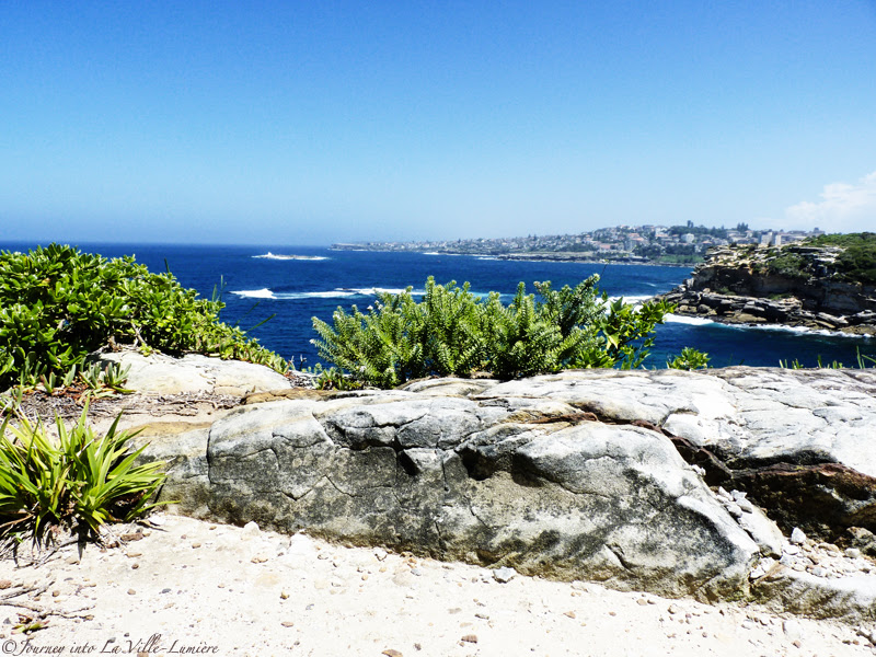 Bondi to Coogee Beach Coastal Walk, Australia