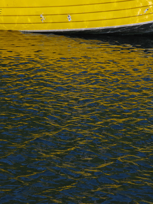 yellow waves in Kasaan Harbor, Kasaan, Alaska