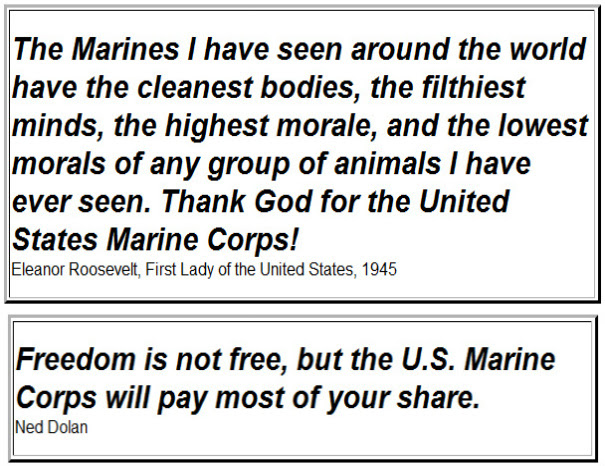 Eleanor Roosevelt Quote About Marines Adorable Marine Corps Quotes