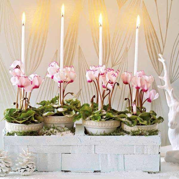 New Year Table Center Piece Photograph Decorations N