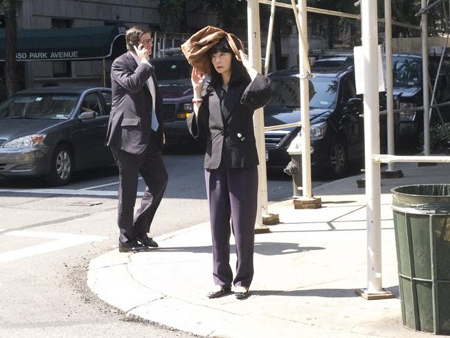 Sunshade device, Park Avenue
