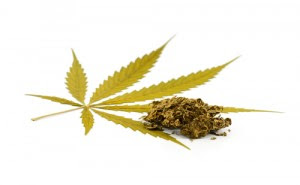 Cannabis MS drug