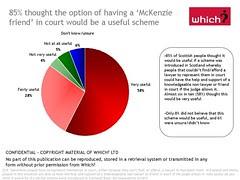McKenzie Friends Which research