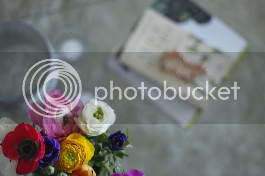 photo _MG_2118_zps52bfc3b6.jpg