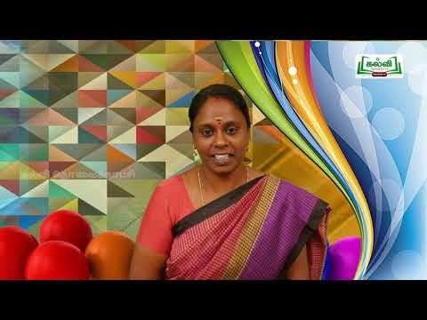 4th Tamil Bridge Course அறிவூட்டும் தொலைக்காட்சிச் செய்திகள் நாள் 7,8 Kalvi TV
