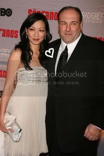 James Gandolfini and his girlfriend of a couple of years, former model Deborah Lin, are engaged.