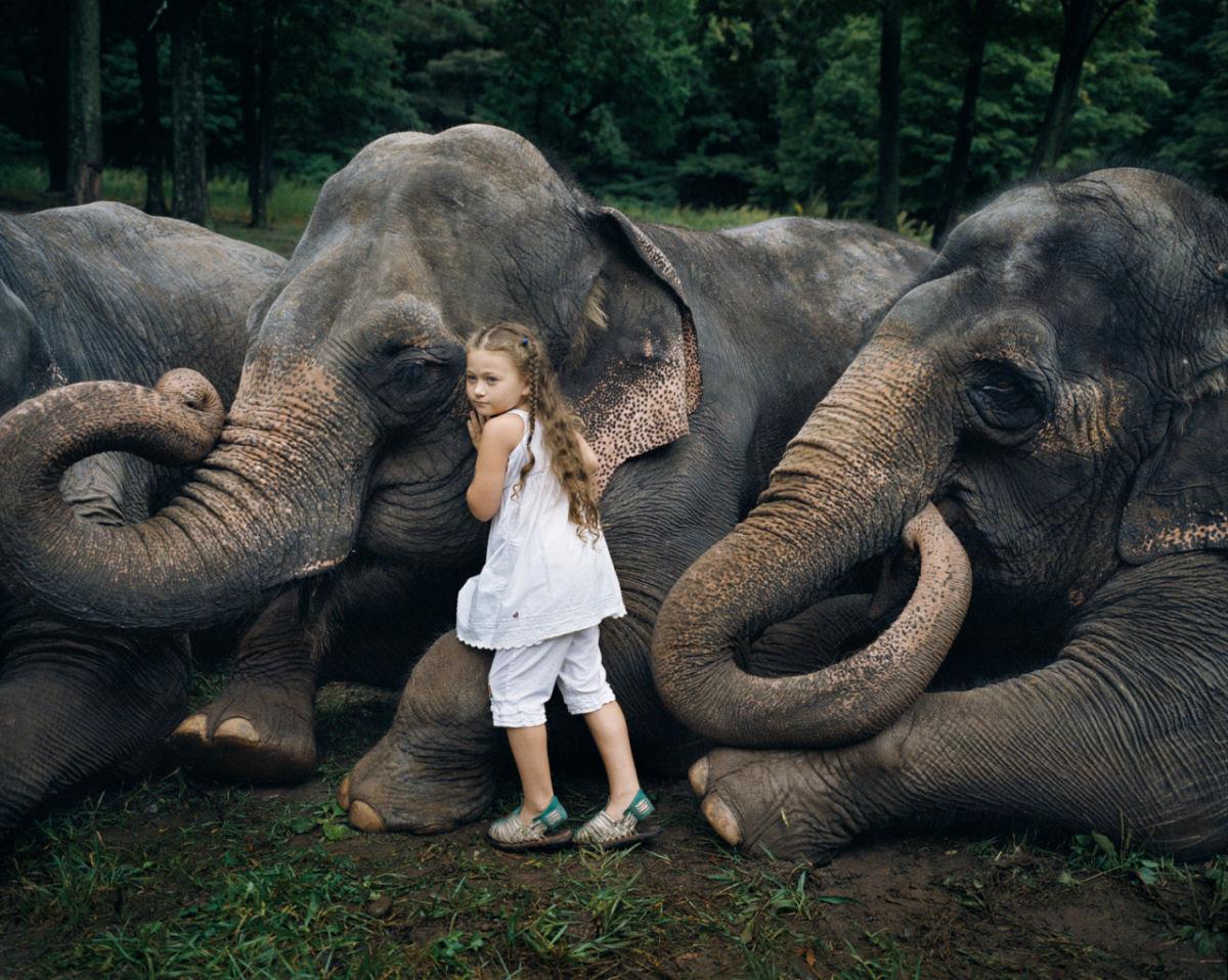 O Mundo de Amelia - A menina que cresceu com os animais e os considera seus irmãos 13