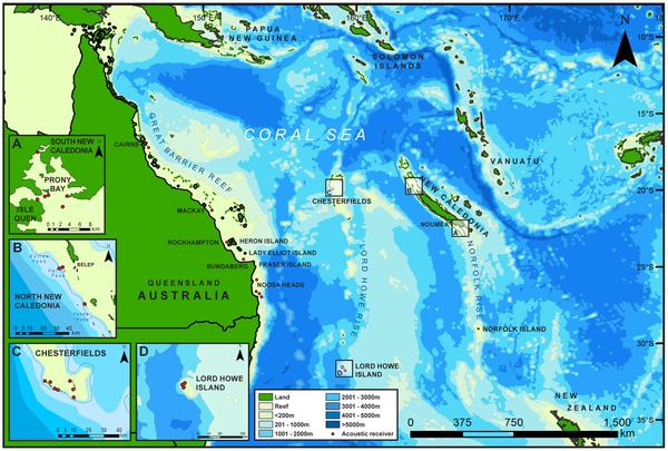 Figure 1 Seamounts and surrounding bathymetry across the Coral Sea between New Caledonia and Australia.