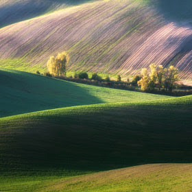 Autumn ... by Marcin Sobas (MarcinSobas) on 500px.com