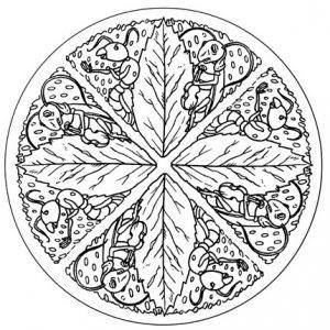 Los 7 Mandalas Más Difíciles Para Colorear Todo Mandalas