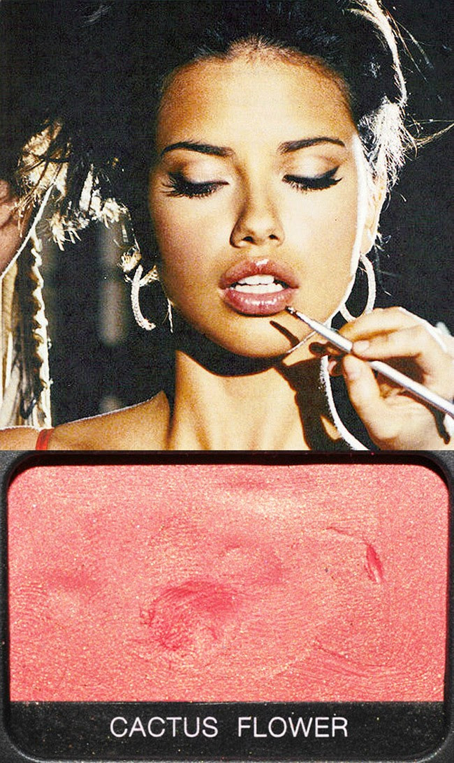 Adriana Lima, Bronze makeup and beauty, Nars eyeshadow