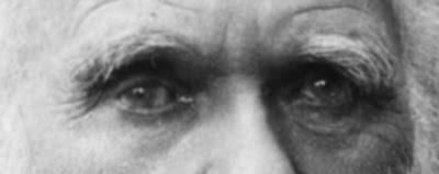 O olhar de Darwin