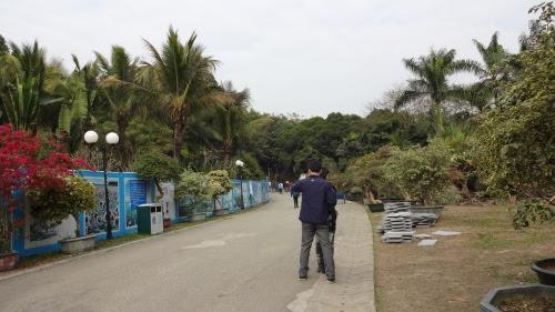 蓮花山公園 お散歩