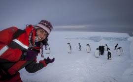 Bárbara Veiga e os pinguins na Antártida (Crédito: Bárbara Veiga)