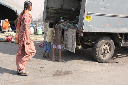 scavenging foodstuff from the garbage van... by firoze shakir photographerno1