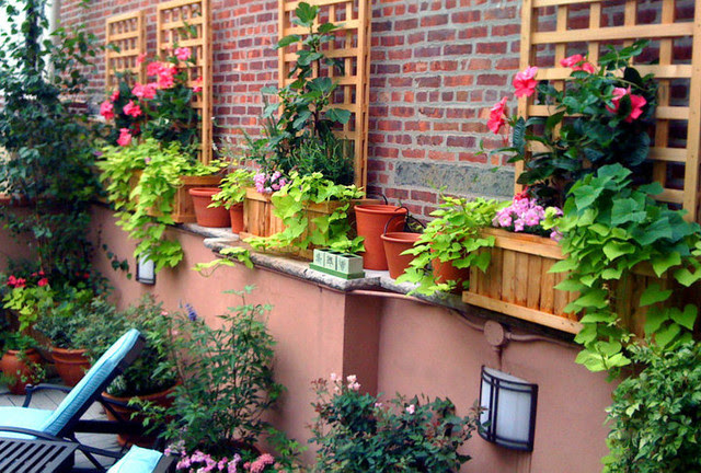 Village Terrace Design: Roof Garden, Planter Boxes, Vines, Brick ...