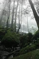Katoomba Falls mood