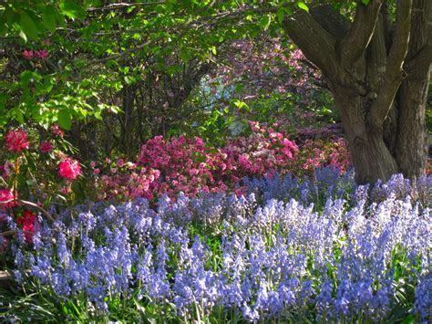 Best Spring Garden Events in NSW   Sydney