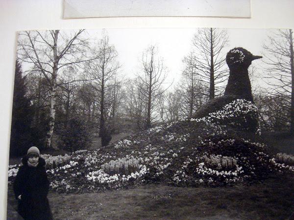 Blumeninsel Mainau 1980