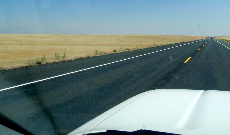 Rolling wheat fields of eastern Washington State.