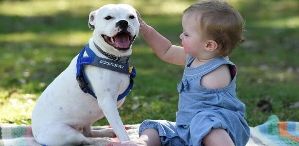 Ella nasceu apenas com o braço direito e a cadela Snowy tem três patas